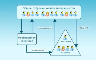 Тсн и тсж: в чем разница между организациями — отличия