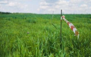 Геодезические работы на земельном участке: что это такое, виды