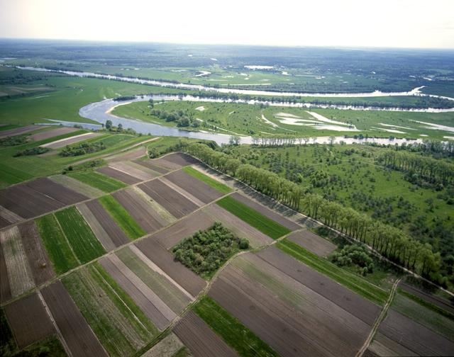 Правила землепользования и застройки - что это