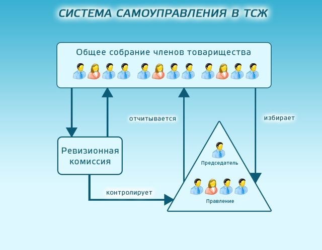 Кто может инициировать аудиторскую проверку ТСЖ