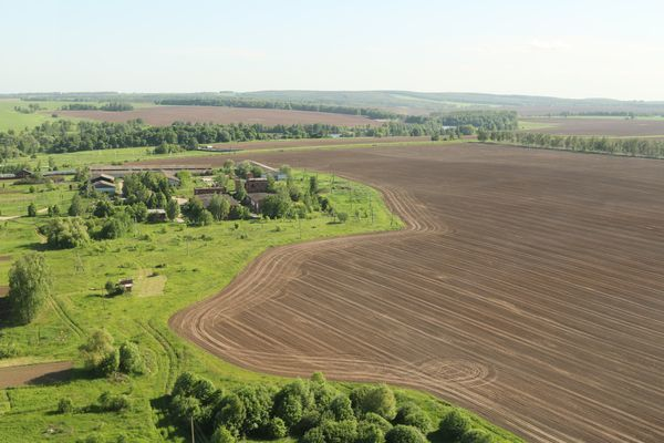 Перевод земли из сельхозназначения в земли ИЖС: порядок перевода
