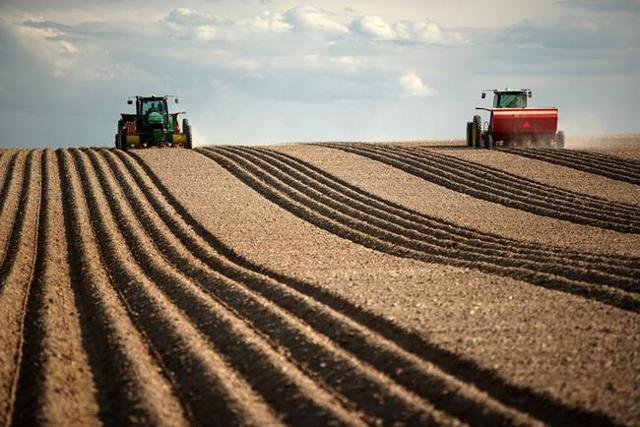 Общая долевая собственность на земельный участок: особенности