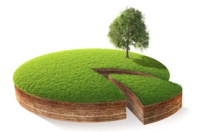 Совместная собственность на землю: особенности