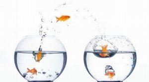 Как поменять прописку — Порядок оформления прописки