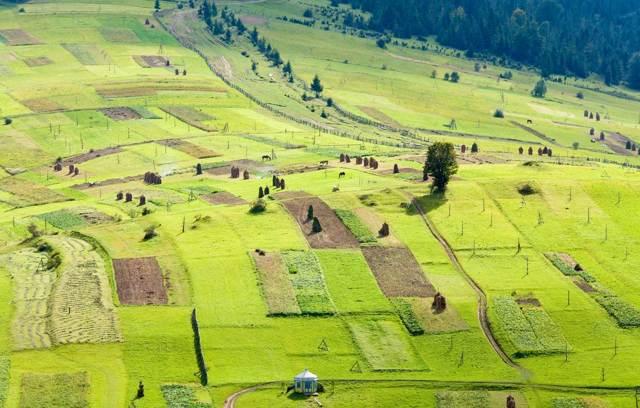 Землеустройство — что это такое | Виды и понятия землеустройства