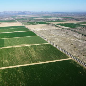 Как купить землю у государства под ИЖС или сельхозназначения