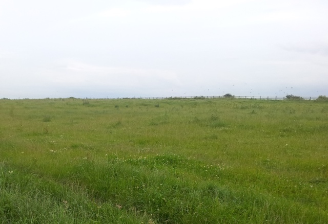 Как получить землю от государства | Бесплатный земельный участок