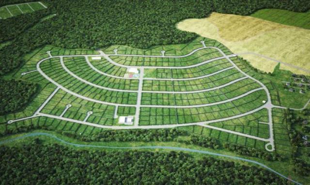 Землеустроительная экспертиза | Кадастровые экспертизы земельных участков